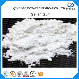 CAS 71010-52-1 Food Additive Gum High Acyl / Low Acyl Cream White Color