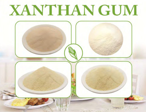 80 mesh High Purity Xanthan Gum Polymer Food Grade Powder Starch For Drink ISO Certificated